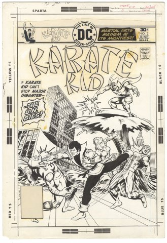 Karate Kid #2 Cover